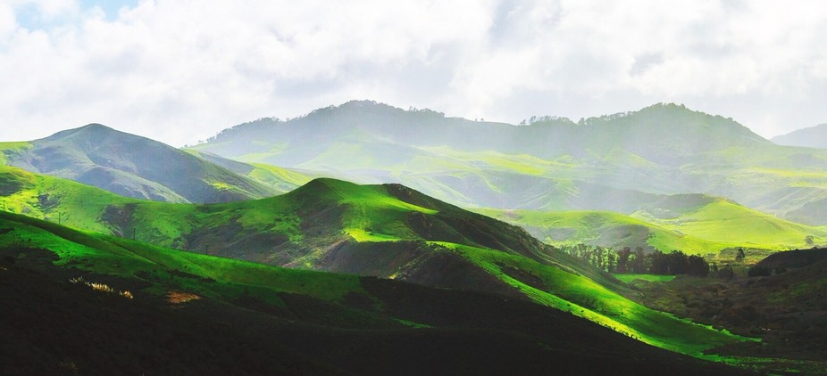 Taken in Springtime in Central Coast California. It was a fairly rainy late January in this droug...