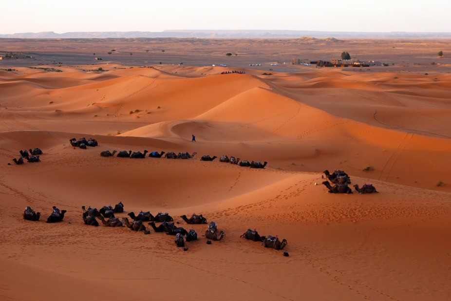 Riding into the Sahara Desert on a camel caravan to catch the sunset was another check off the bu...