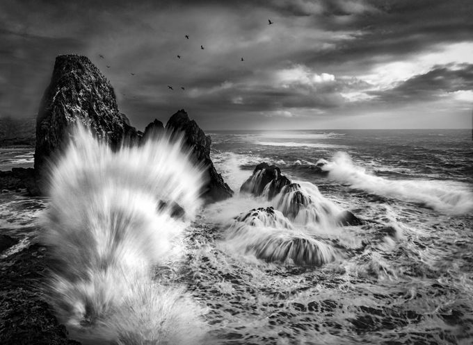 The Perfect Splash by garyhunter_6788 - The Water In Black And White Photo Contest