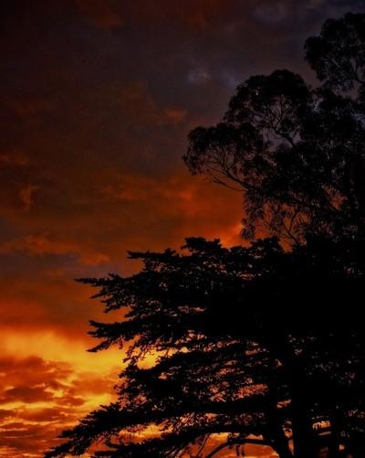Sunrise, Orange 2016-01-28 #209 of 365