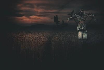 The sacry scarecrow