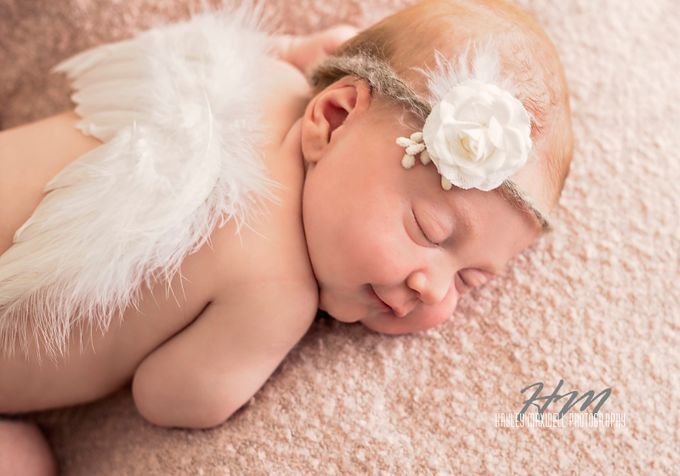 Little Cherub by hayleycottell-maxwell - Babies Are Cute Photo Contest