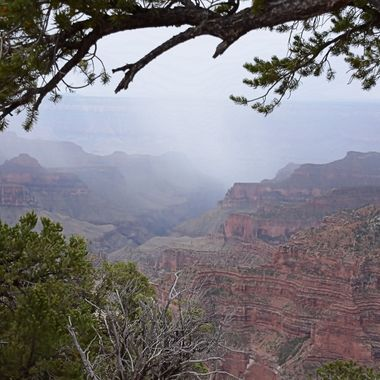 After driving for 3 hours, got to the Grand Canyon, it started to sprinkle.  It never poured, thank goodness, got some good shots despite the gloom!