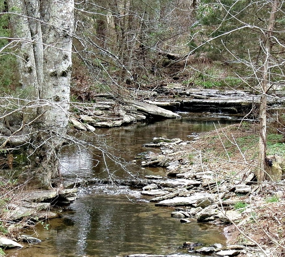 A quiet stream can inspire a thousand words...