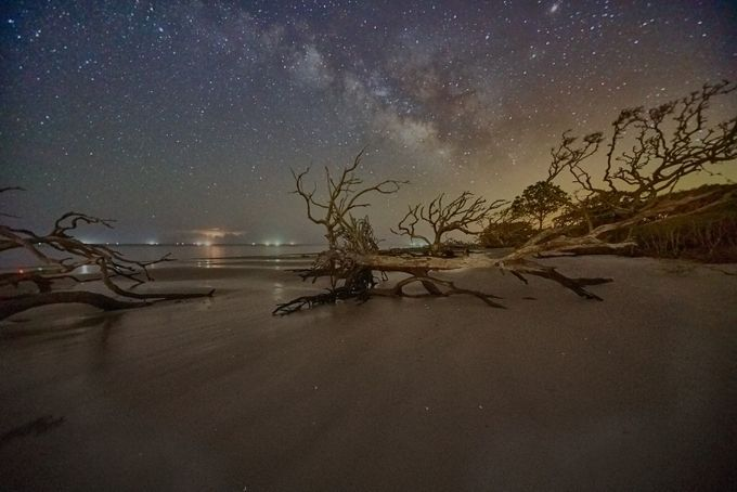 Stars and  Driftwood COP9 by auxgen4 - Monthly Pro Vol 24 Photo Contest