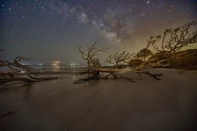 Stars and  Driftwood COP9