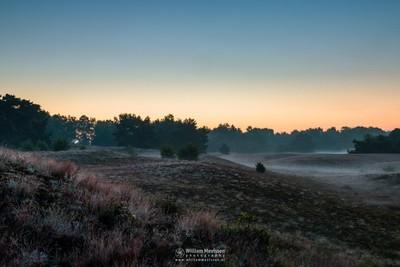 Misty Layers