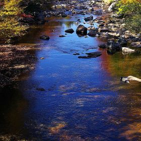 NH Brook in the fall