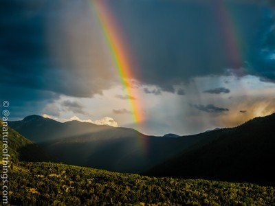 Rainbow Bright Twice P7040128hq