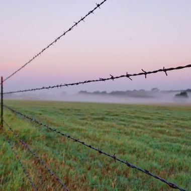 Ranch fencing at dawn, Sisterdale