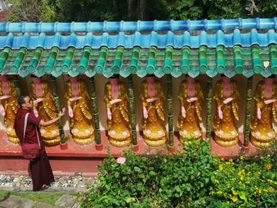 Buddhist Selfie.