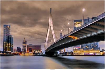 View on the Erasmusbridge, Rotterdam NL by night