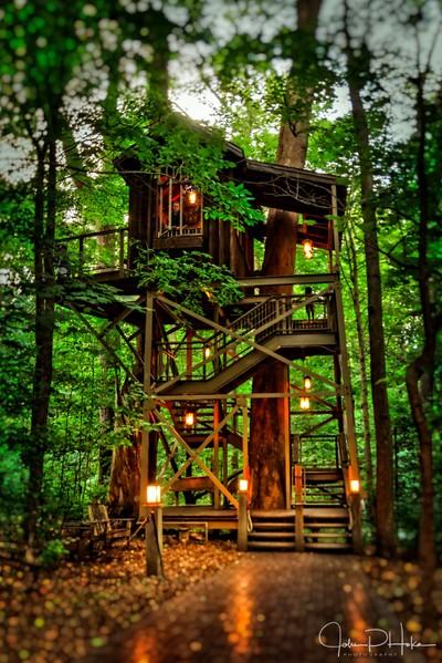 Longwood Gardens Tree House