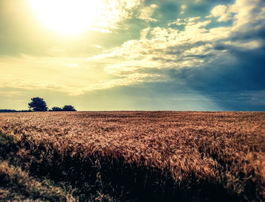Mid summer, central Nebraska, late afternoon