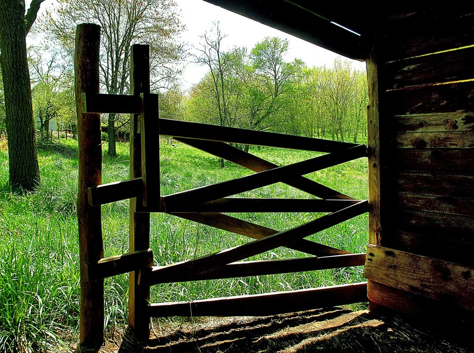 """A view from the country barn.  """"Looks delicious!"""" said the horse."""