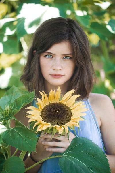 a sunflower for a sunflower.