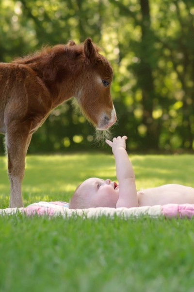 Baby and horse love