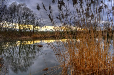 Late afternoon on the lake