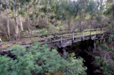 Burkes bridge