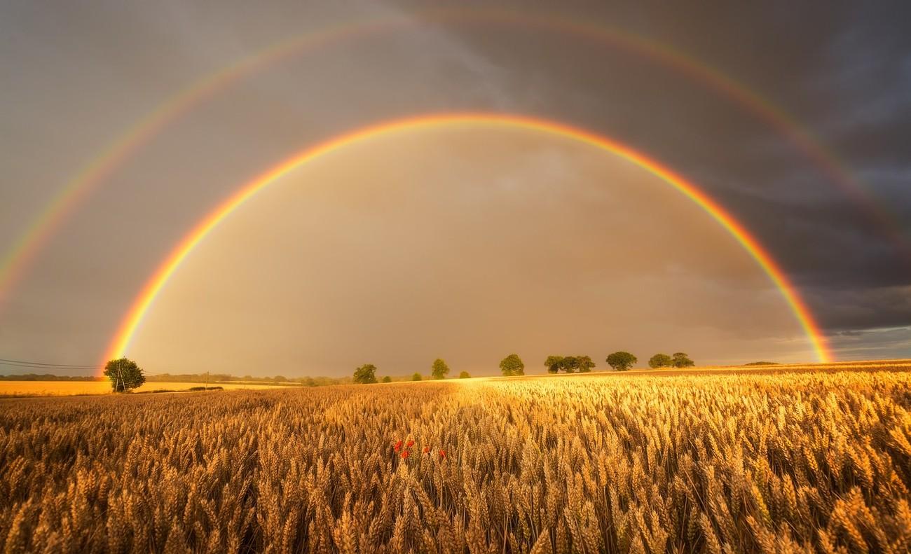 Rainbows Overhead Photo Contest Winners