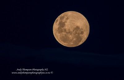 'Love the Moon'