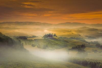 Happy Morning Fog ...