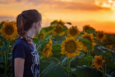 Sunflowers and sunsets never get old.