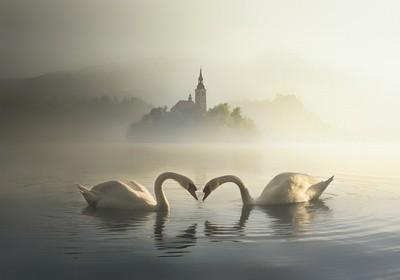 Morning Bled