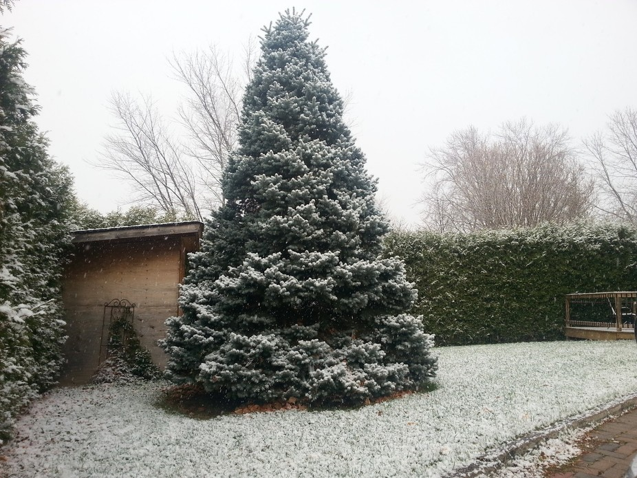The first snow fall we had in 2015