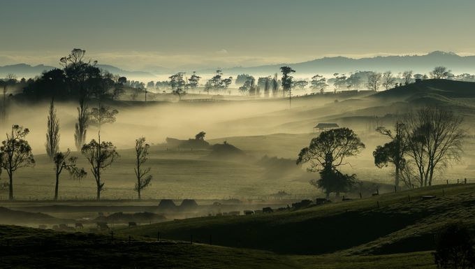 Misty morning by carolyns - The Zen Moment Photo Contest