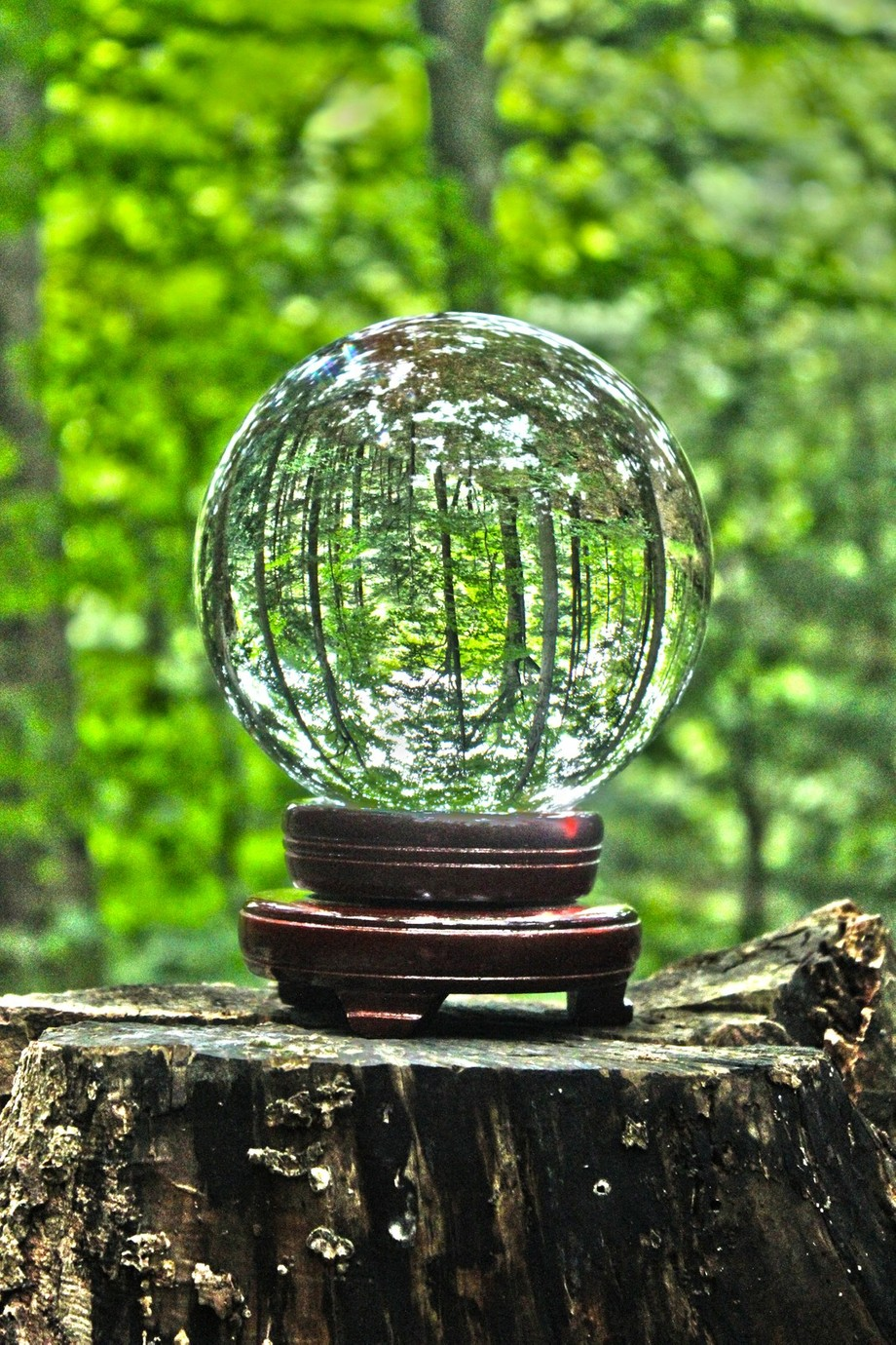 this was a cool shot of the crystal ball within the carpenter falls forest.