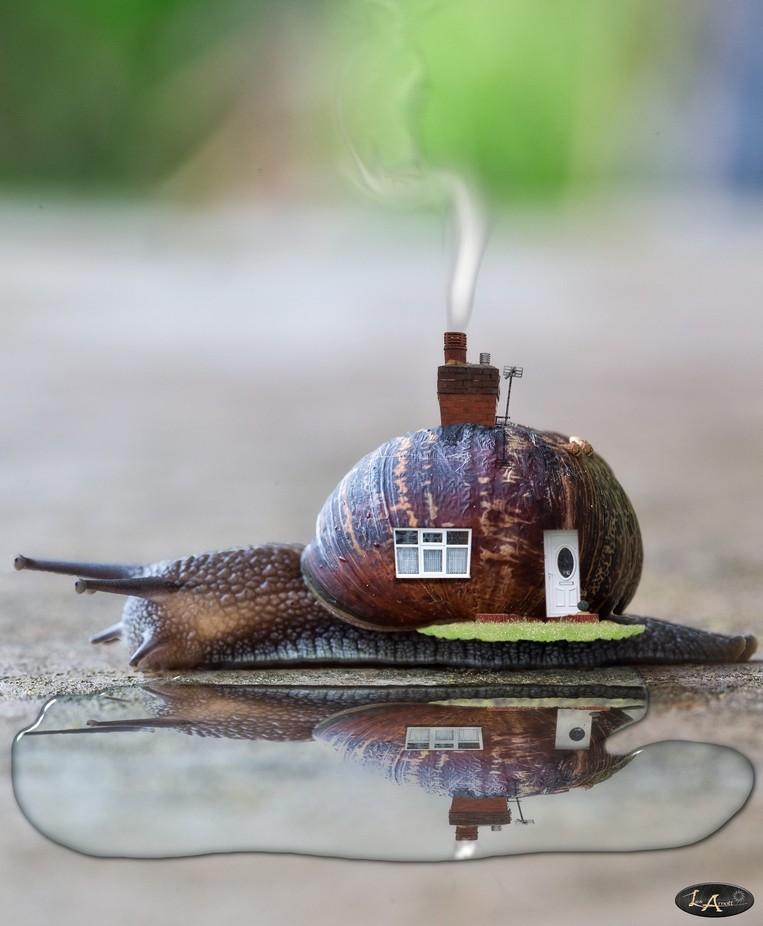 Moving House by lesarnott - A Fantasy World Photo Contest