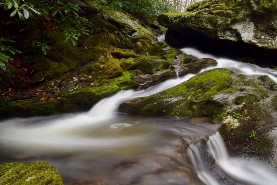 Spring cascades