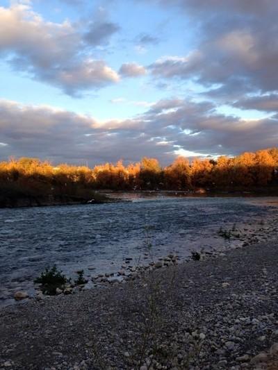 Bow River at Pearce Estate, Calgary