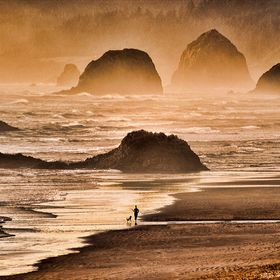 Taken on a cold winter morning on one of Oregon's endless beaches.