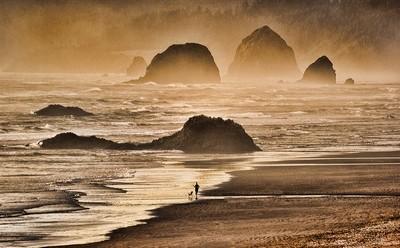 Oregon's winter beach