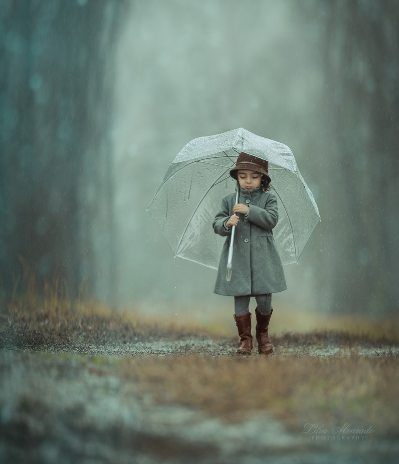 When It Rains... by liliaalvarado - Mist And Drizzle Photo Contest