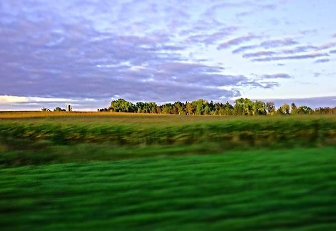 Minnesota Green copy