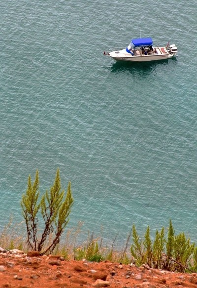 The Boat and the Shrub