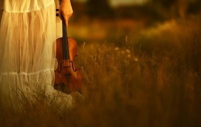 Vivi&violine