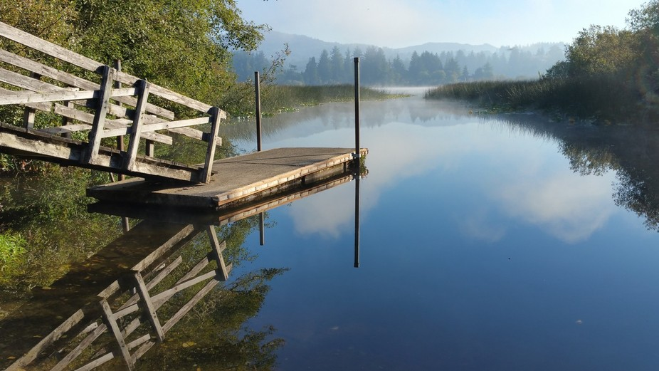 An atmosphere of tranquility on a summer morning. Rising from the lake the mists softened the ref...