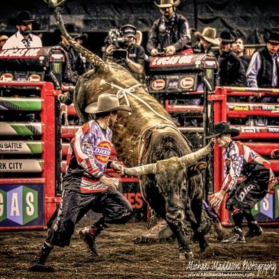 Staredown At The Rodeo