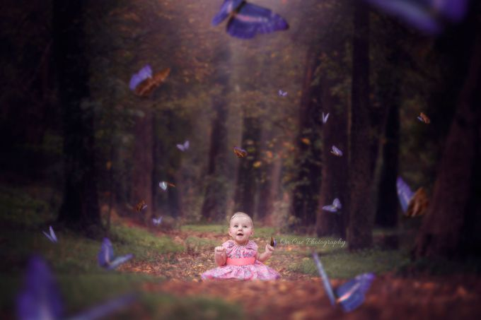 'Butterfly Lane' by CarleyShellyPhotoArtistry - A Fantasy World Photo Contest