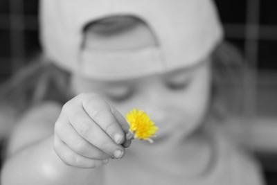 Lexi's little flower