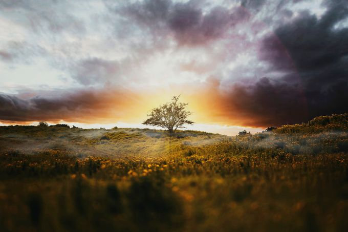 Alone by ilyayakover - Sweeping Landscapes Photo Contest