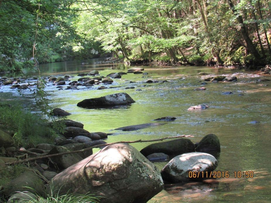 Little Pigeon River  That Runs Through Sevierville Pigeon Forge  And Gatlinburg