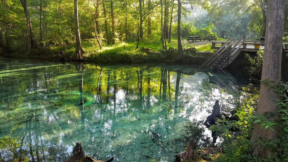 Peace and quite early in the morning at Ginnie springs  Fl.
