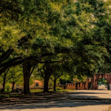 Pickens Street on the grounds of the old South Carolina State Hospital