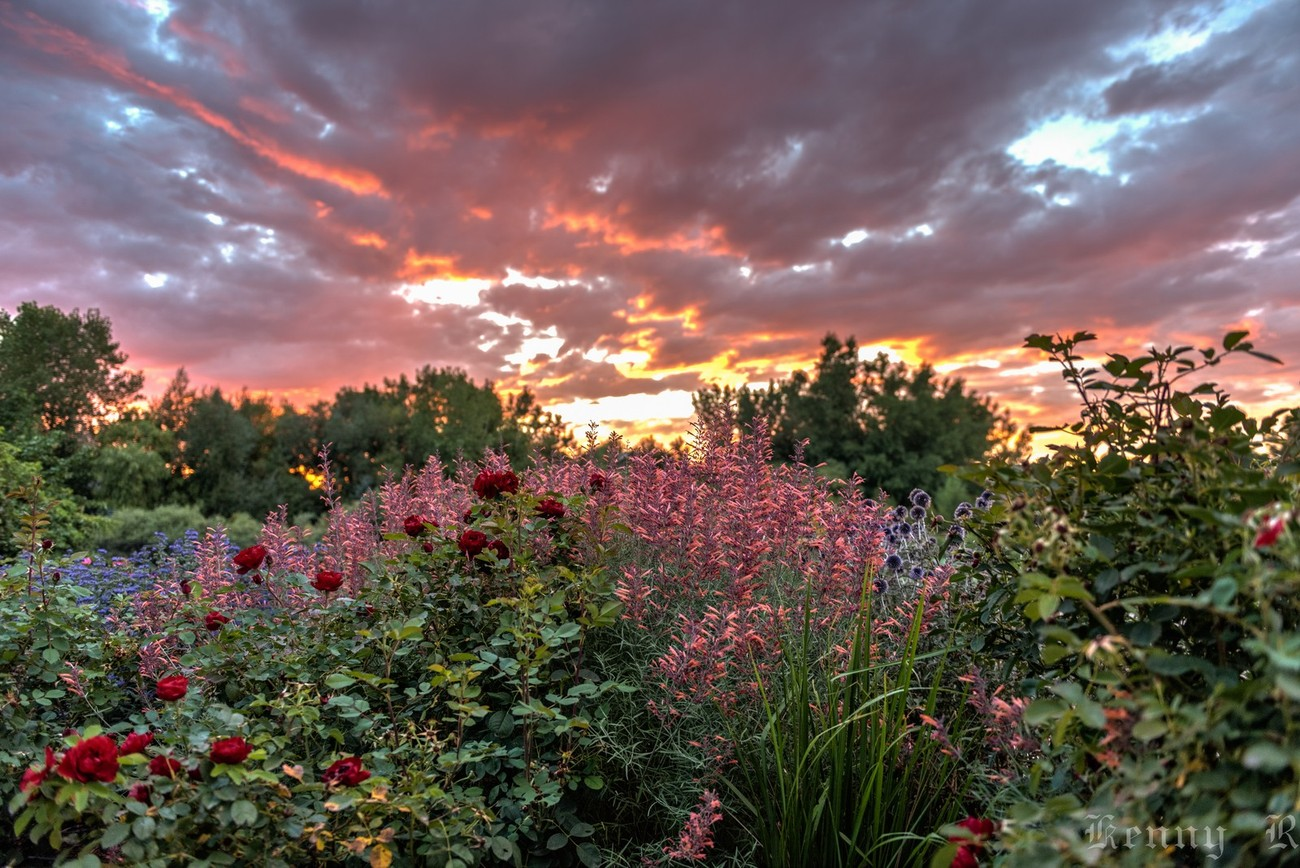 Sunset At The Gardens At Spring Creek