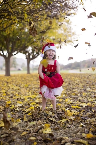 Fall and Christmas fun